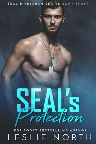 Seal's Protection (Seal and Veteran Series #3)