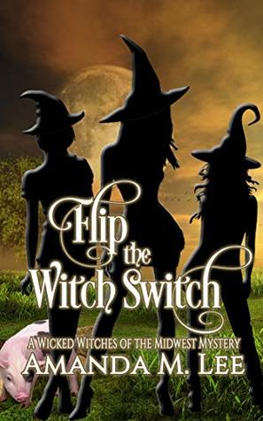 Flip the Witch Switch (Wicked Witches of the Midwest, #14)