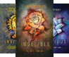 The Twixt (4 Book Series)