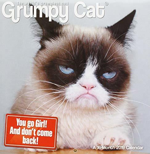 Grumpy Cat 2019 Calendar