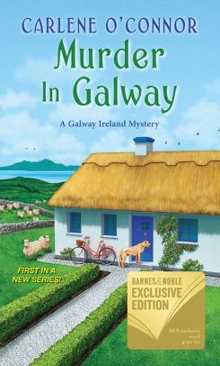 Murder In Galway (Galway Ireland Mystery #1)