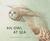 An Owl at Sea by Susan Vande Griek