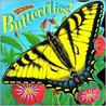 Know-It-Alls Butterflies!
