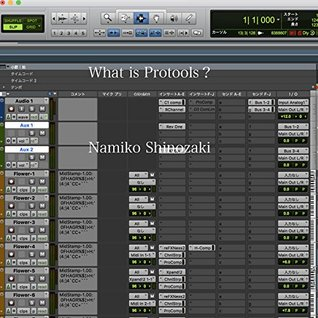What Is Protools English ver