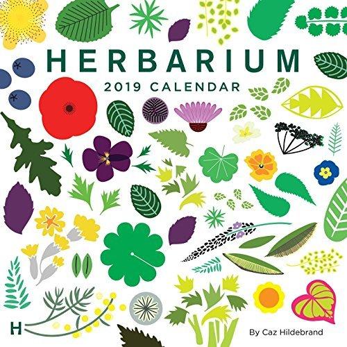 Herbarium 2019 Wall Calendar