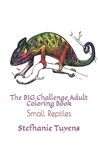 The BIG Challenge Adult Coloring Book: Small Reptiles