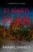 Flawed Plan by Amabel Daniels