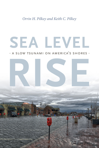 Sea Level Rise: A Slow Tsunami on America's Shores