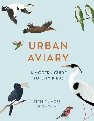 Urban Aviary: A modern guide to city birds