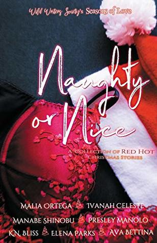 Naughty or Nice: A Collection of Red Hot Christmas Stories