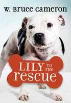 Lily to the Rescue (Lily to the Rescue! #1)