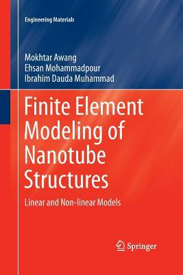 Finite Element Modeling of Nanotube Structures: Linear and Non-Linear Models