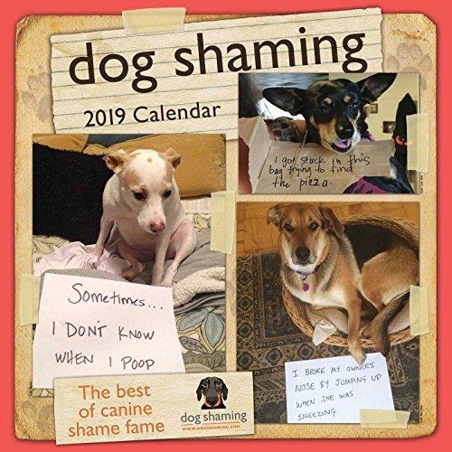 Dog Shaming 2019 Wall Calendar