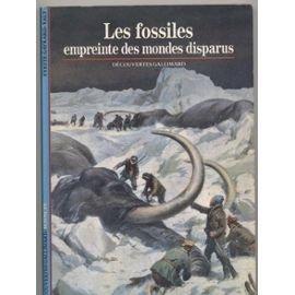 Les fossiles, empreinte des mondes disparus