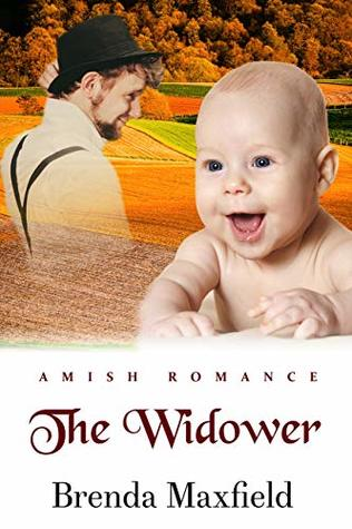 The Widower (Amy's Story Book 3)
