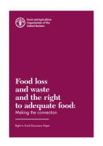 Food Loss and Waste and the Right to Adequate Food: Making the Connection