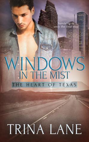 Windows in the Mist