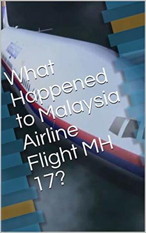 What Happened to Malaysia Airline Flight MH 17?