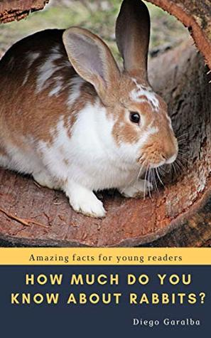 HOW MUCH DO YOU KNOW ABOUT RABBITS?: Amazing facts for young readers with great pictures (How Much Do You Know...? Book 3)