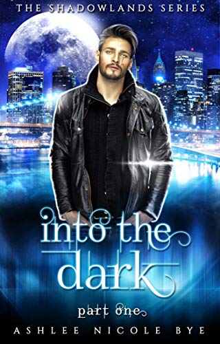 Into the Dark: A Young Adult Urban Fantasy Adventure (The Shadowlands Series Book 3)