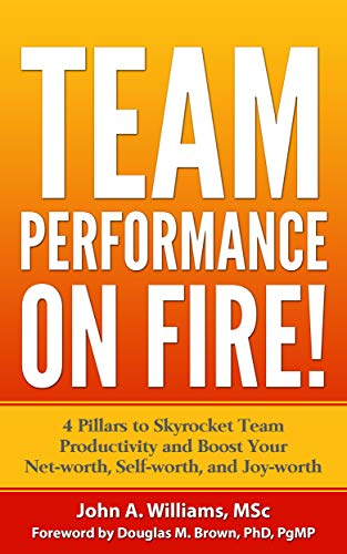 TEAM PERFORMANCE ON FIRE!: 4 Pillars to Skyrocket Team Productivity and Boost Your Net-worth, Self-worth, and Joy-worth