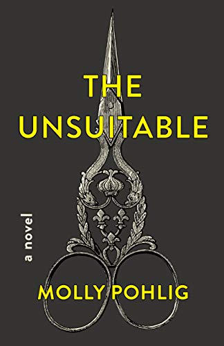 The Unsuitable: A Novel