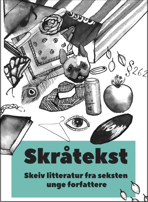 Skråtekst: Skeiv litteratur fra seksten unge forfattere