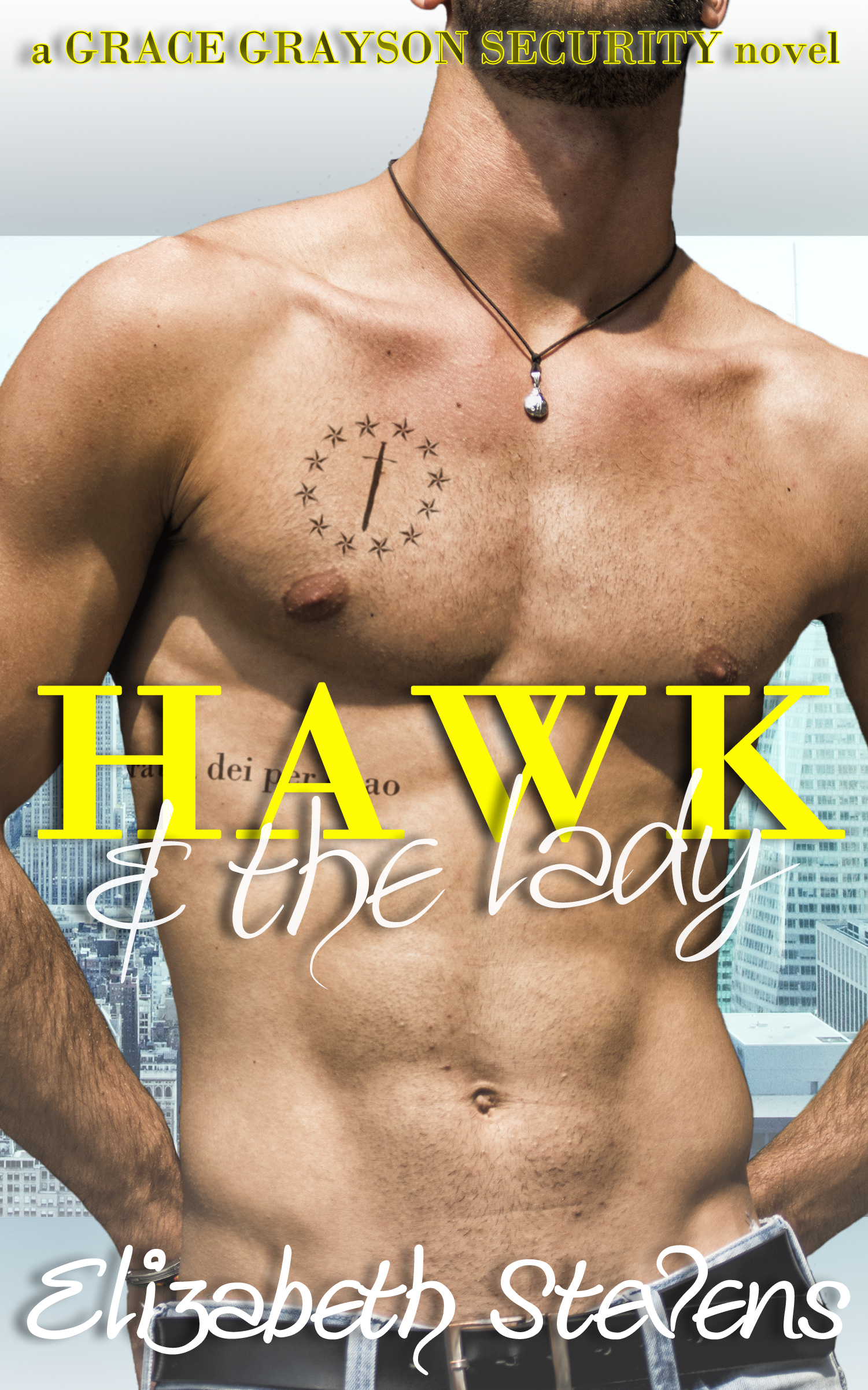 Hawk & the Lady (Grace Grayson Security, #2)