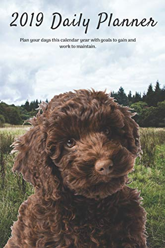 2019 Daily Planner Plan your days this calendar year with goals to gain and work to maintain.: Cute & Funny Labradoodle Dog Appointment Book for ... for Tracking Notes & To-Do List: 6 x 9 in