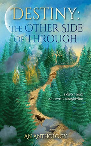 Destiny: The Other Side of Through (OSOT Book 1)