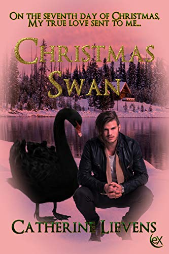 Christmas Swan (Seven Brothers, #1)