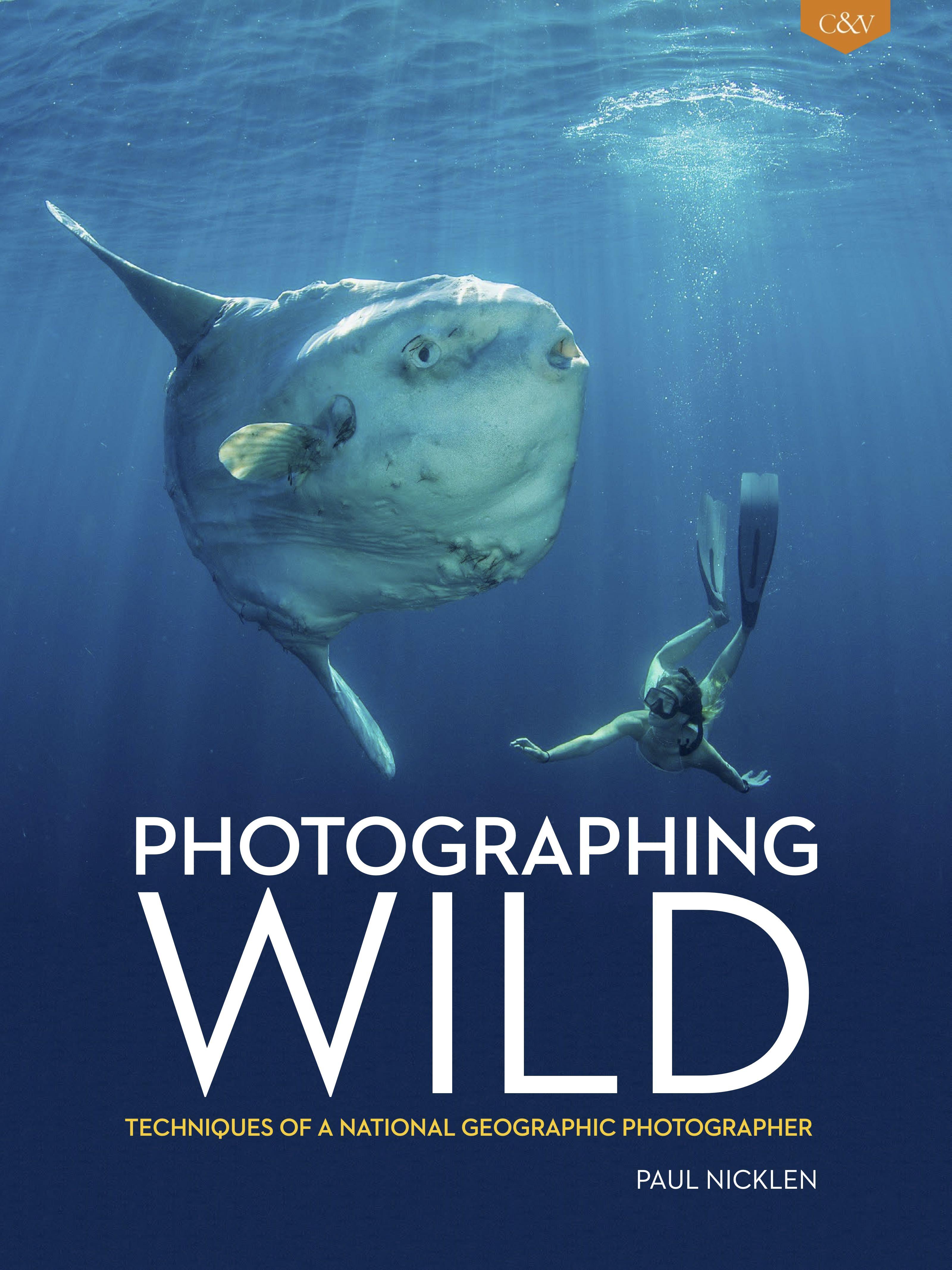 Photographing Wild