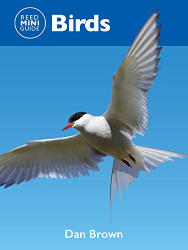 Reed Mini Guide: Birds: Comprehensive Guide To Birds