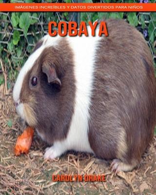 Cobaya: Im�genes incre�bles y datos divertidos para ni�os