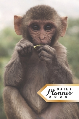 Daily Planner 2020: Monkey Lover 52 Weeks 365 Day Daily Planner for Year 2020 6x9 Everyday Organizer Monday to Sunday Nature Enthusiast Animal Activism Life Plan Academic Scheduler New Year Gift 2020 Cute Monkey