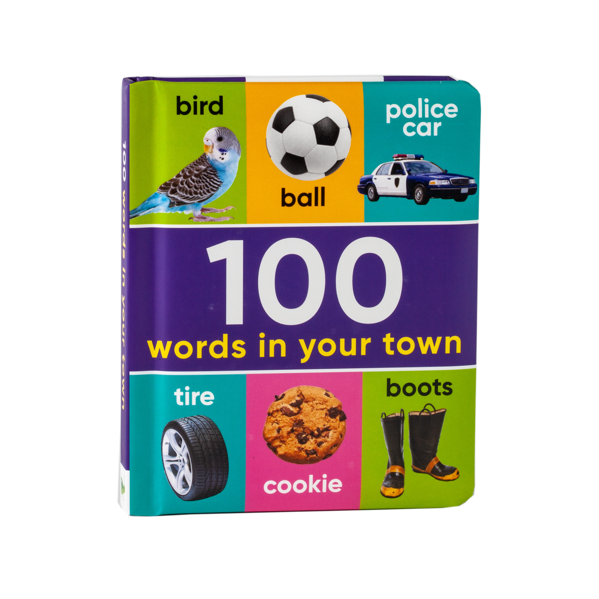 100 Words in Your Town (Book Downloadable App!)