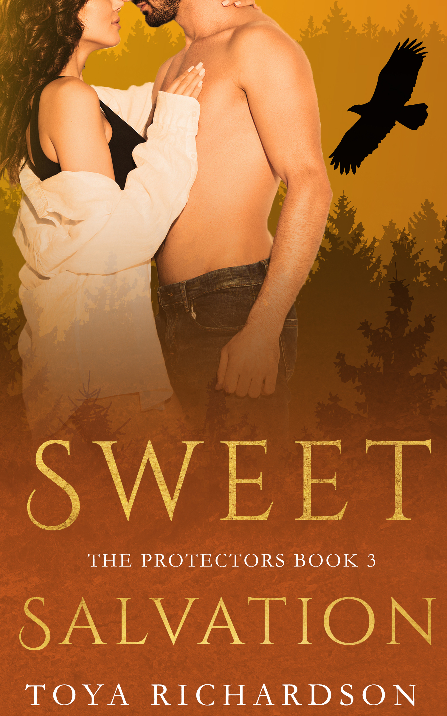 Sweet Salvation (The Protectors, #3)