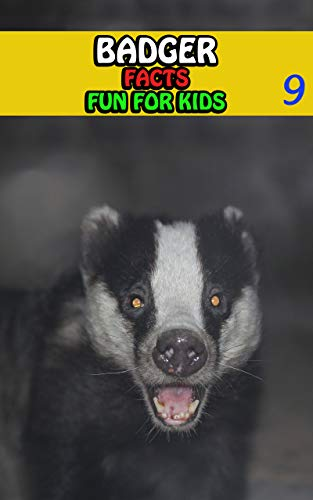 Badger Facts: Badgers Fact Books For Kids Series For Girls or Boys Ages 4-8 - Animal Fun Facts Book 9