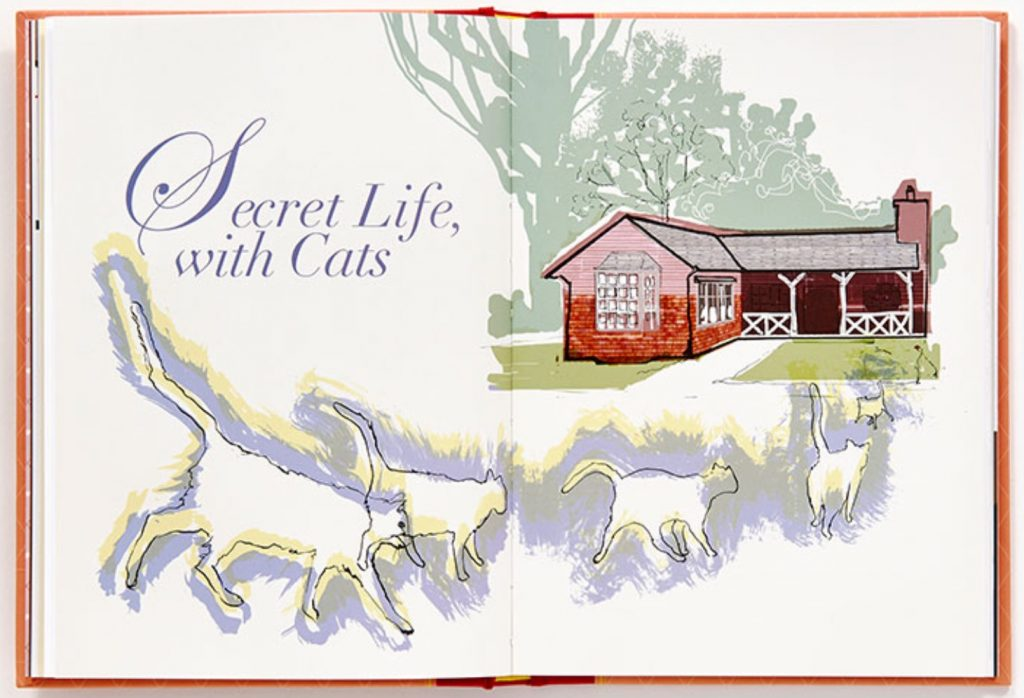 Secret Life, with Cats
