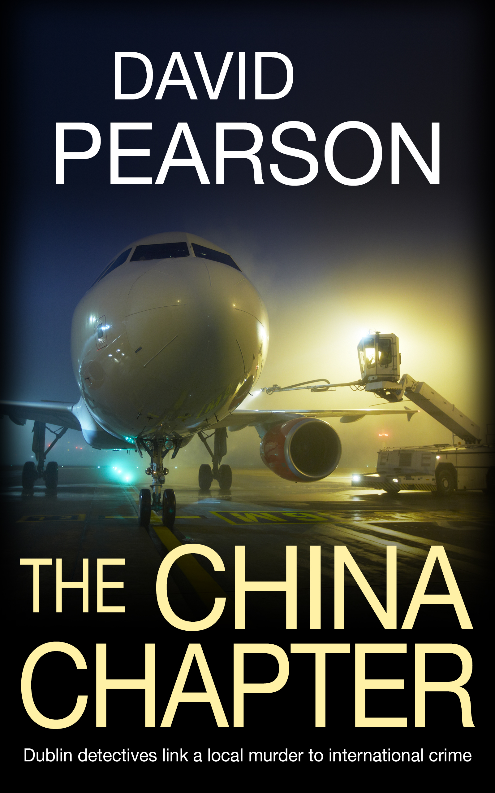 The China Chapter (The Dublin Homicides #3)