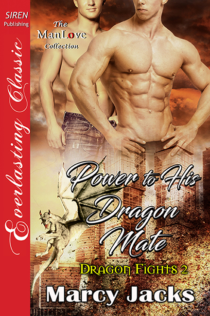 Power to His Dragon Mate (Dragon Fights, #2)
