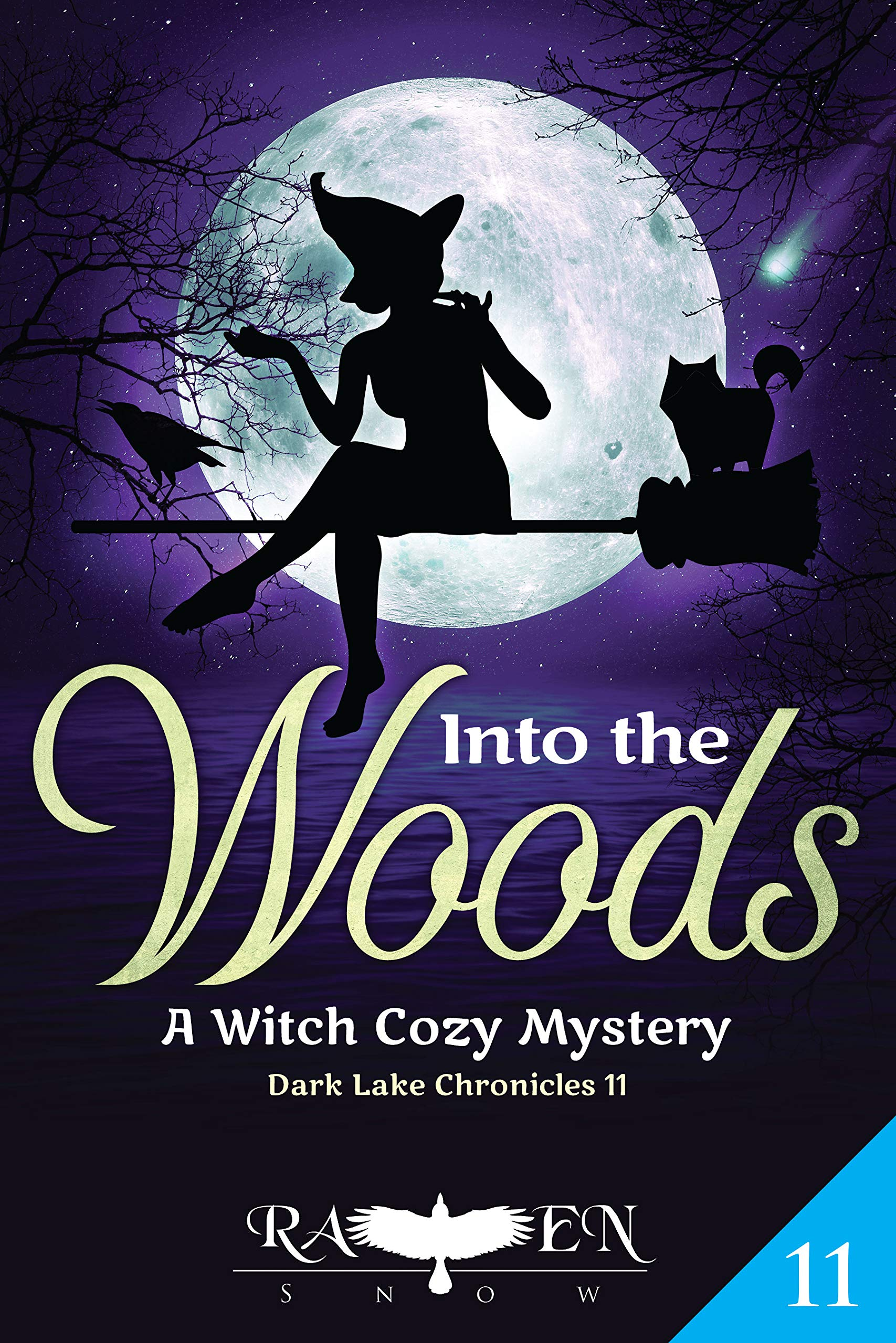 Into the Woods: A Witch Cozy Mystery (Dark Lake Chronicles Book 11)