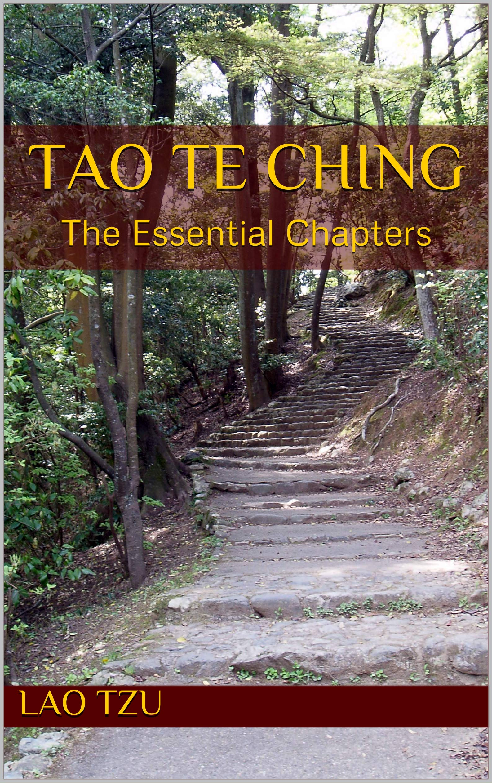 Tao Te Ching: The Essential Chapters