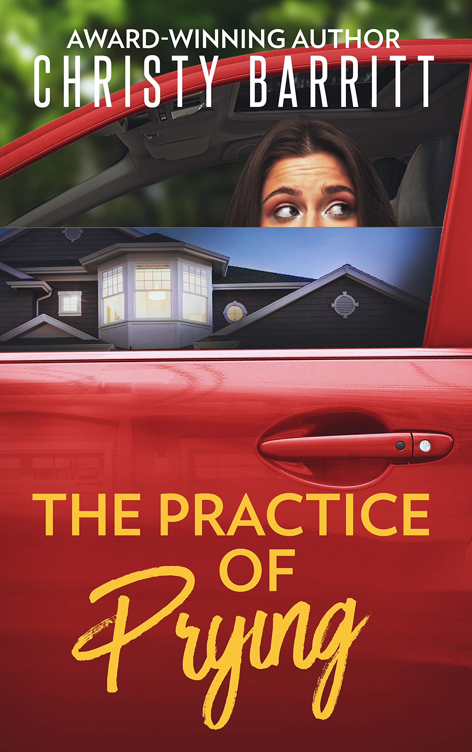 The Practice of Prying (The Sidekick's Survival Guide Mysteries #4)