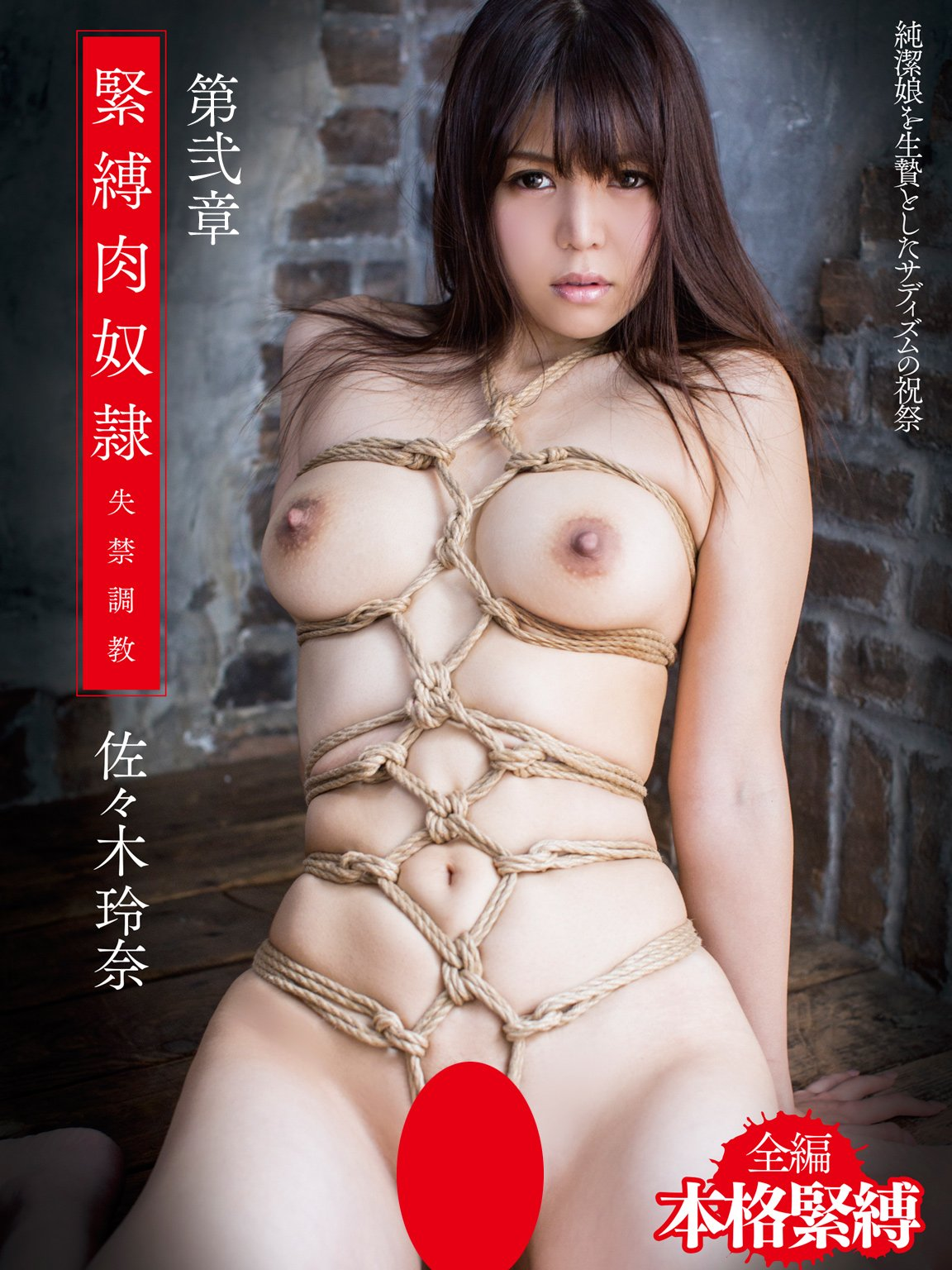 Bondage slave Sasaki Rena Chapter 2 amazon Limited Edition MAXING Japanese Cute Girl Picture Book