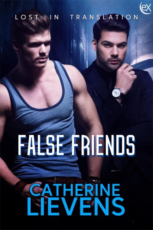 False Friends (Lost in Translation, #5)