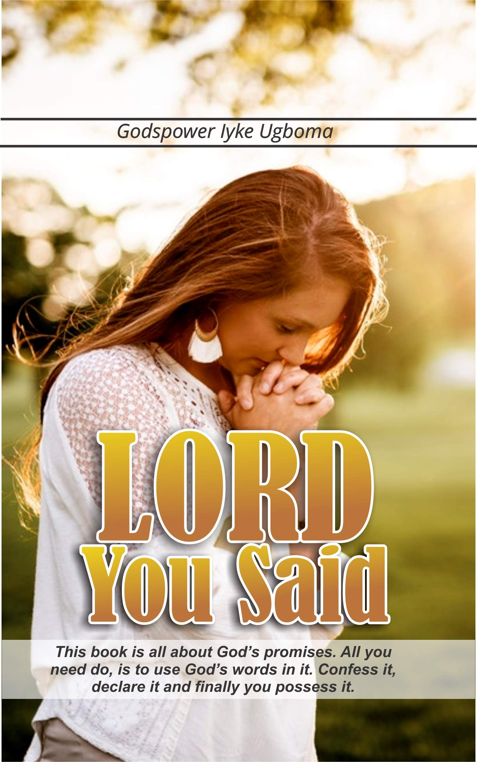LORD YOU SAID: This book is all about God's promises. All you need do, is to use God's words in it. Confess it, declare it and finally you possess it.
