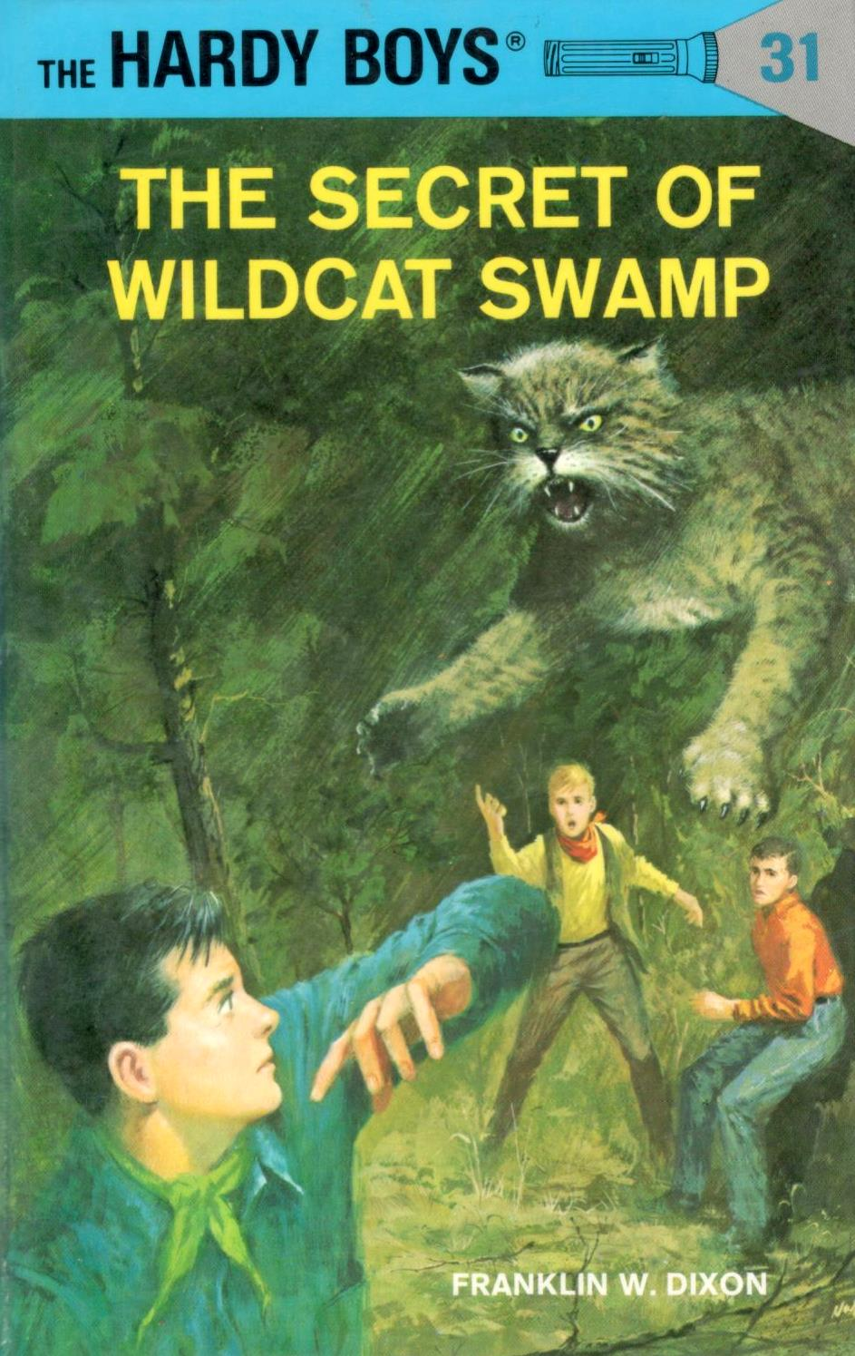 The Secret of Wildcat Swamp (The Hardy Boys, #31)