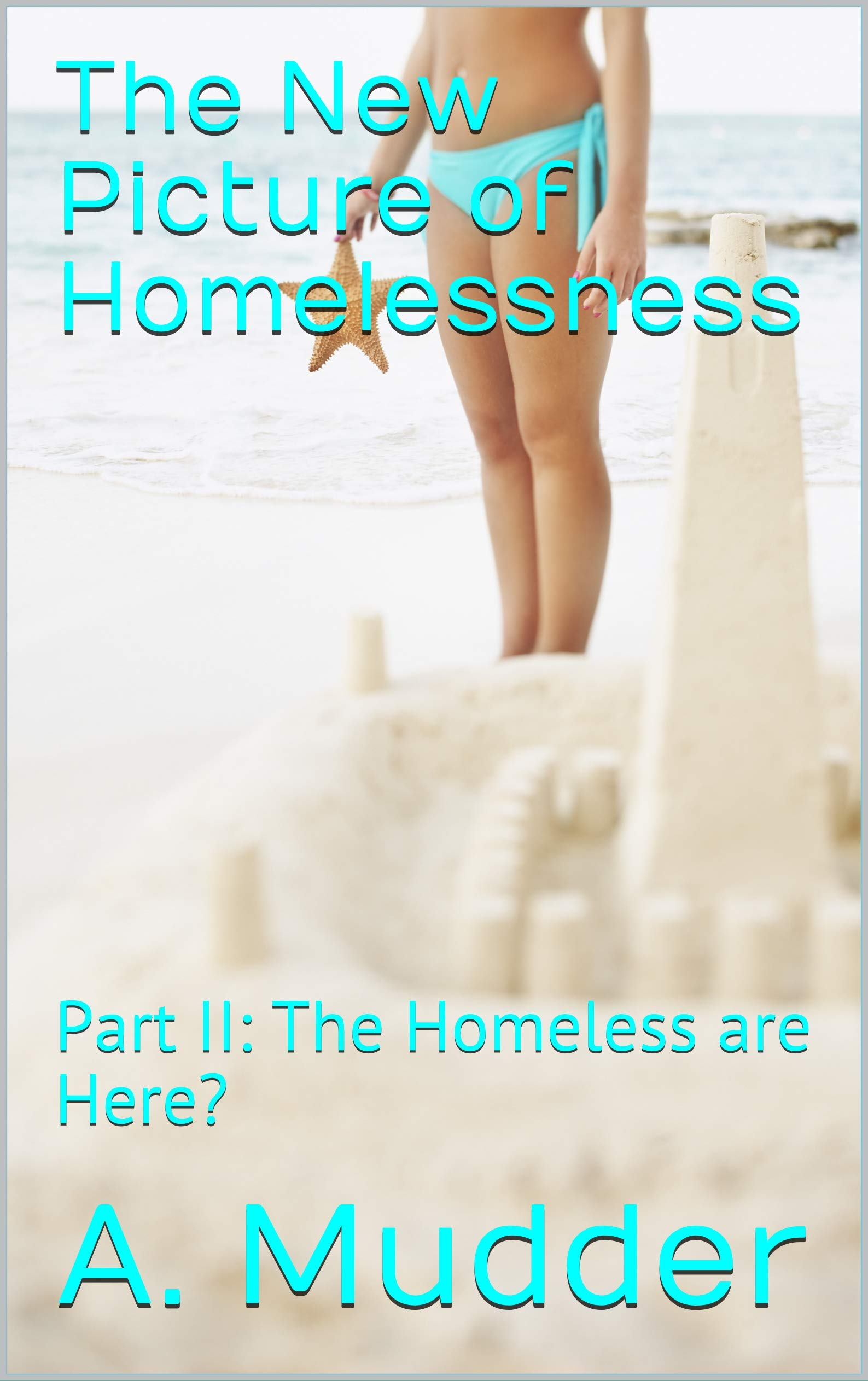 The New Picture of Homelessness: Part II: The Homeless are Here? (People in Pain Series Book 2)