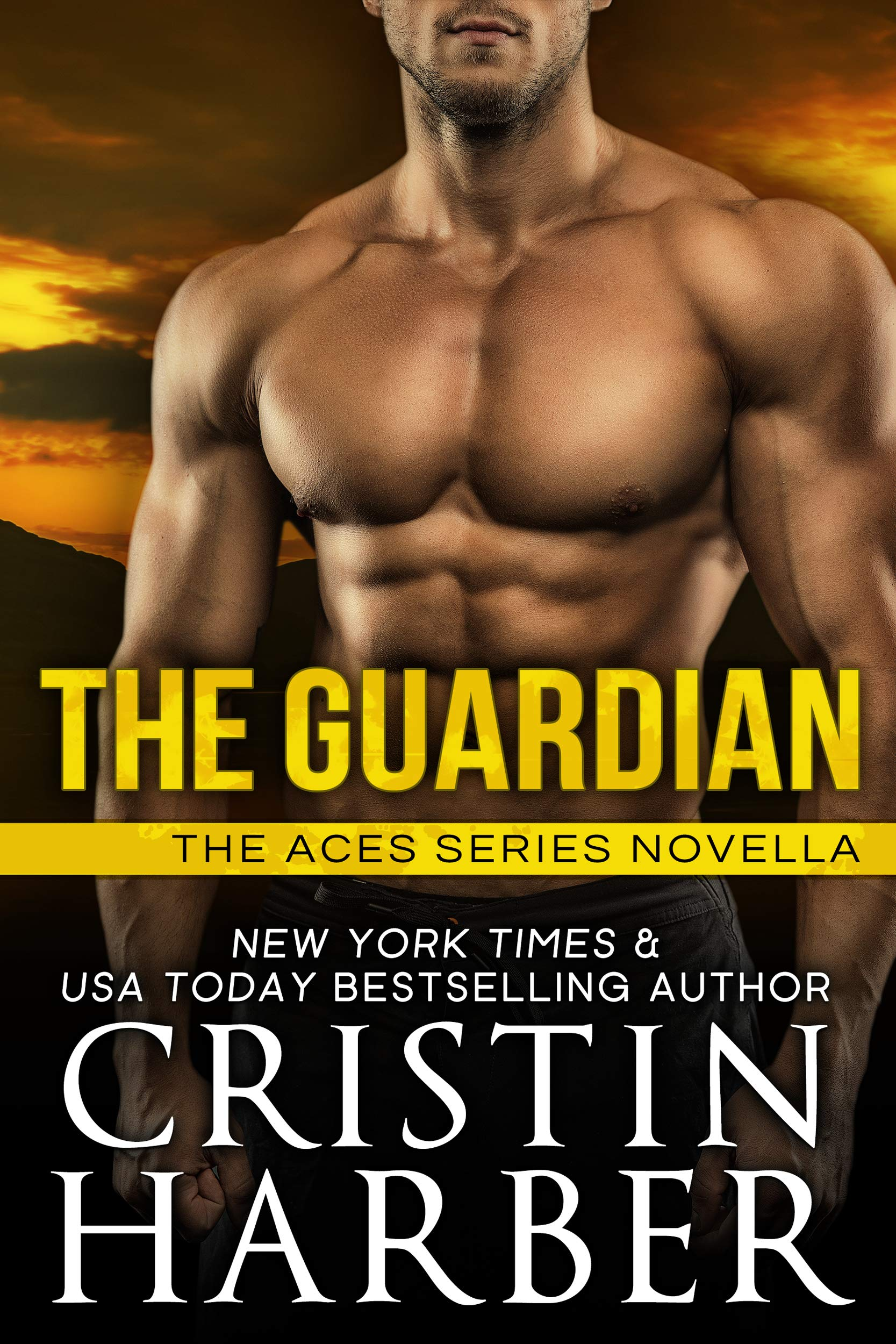 The Guardian (Aces Book 5)
